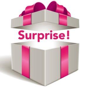 5 POUND MYSTERY BOX SURPRISE BUNDLE